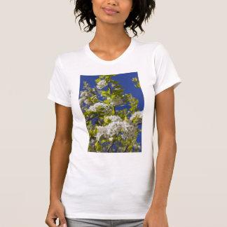 Flowering Pear Tree Tshirt