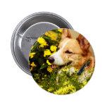 Flowering Pembroke Welsh Corgi Button