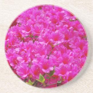 Flowering Pink Azalea Coaster