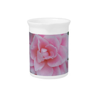 Flowering Pink Camelia Beverage Pitcher