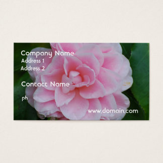 Flowering Pink Camelia Business Card