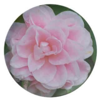 Flowering Pink Camelia Dinner Plate