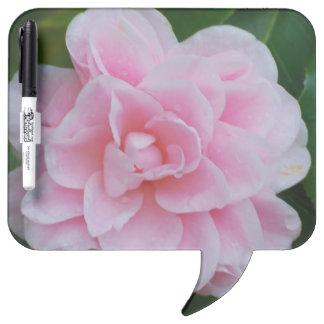 Flowering Pink Camelia Dry Erase Board