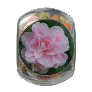 Flowering Pink Camelia Glass Jar