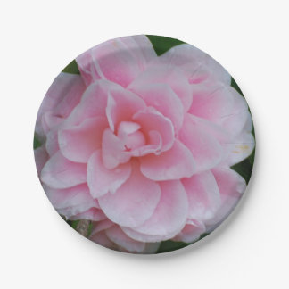 Flowering Pink Camelia Paper Plate