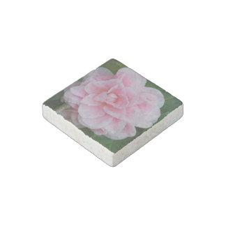Flowering Pink Camelia Stone Magnet