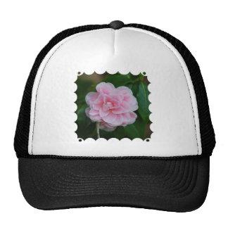 Flowering Pink Camelia Trucker Hat