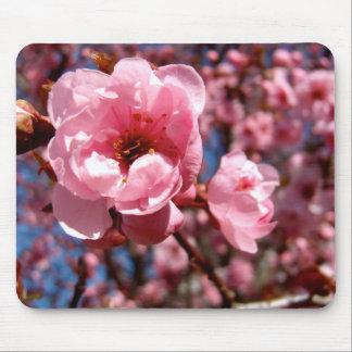 Flowering Plum Mouse Mat