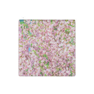 Flowering Plum Stone Magnet