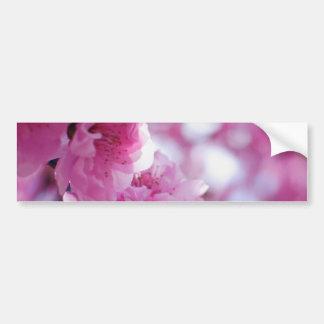 Flowering Plum Tree Blossom Bumper Sticker