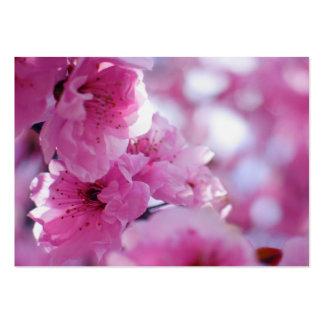 Flowering Plum Tree Blossom Business Card Templates