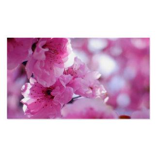 Flowering Plum Tree Blossom Business Card Template