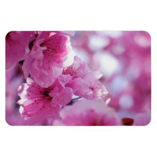 Flowering Plum Tree Blossom Magnet