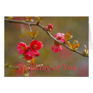 flowering quince thinking of you card
