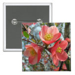 Flowering Quince Tree Buttons