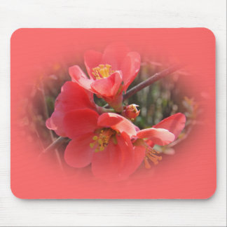 Flowering Quince Tree Mouse Pad