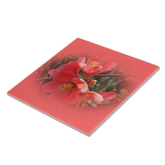 Flowering Quince Tree Tile