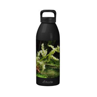 Flowering Rhubarb Stalks Reusable Water Bottles