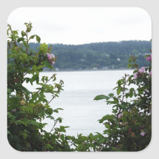 Flowering Shrubs on the Water Square Sticker