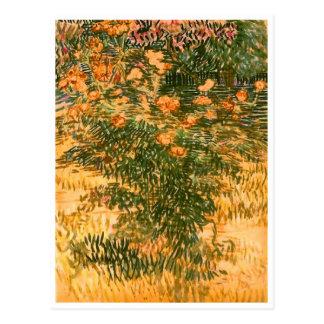 Flowering Shrubs, Vincent van Gogh Postcard