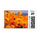 Flowering Stamps