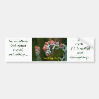 Flowering Succulent Car Bumper Sticker