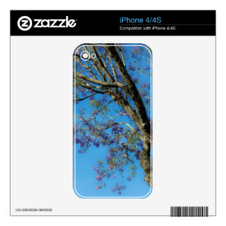 Flowering Tree against Blue Sky Decals For The iPhone 4