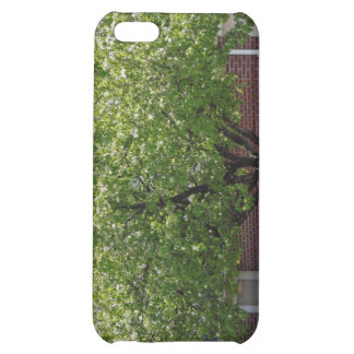 Flowering Tree iPhone Case iPhone 5C Case