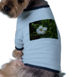 Flowering Tree.JPG Dog Clothes