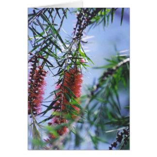 Flowering Tree - Mulala Card
