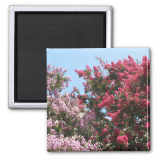flowering trees magnets