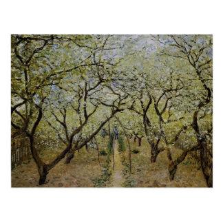 Flowering Trees Post Cards