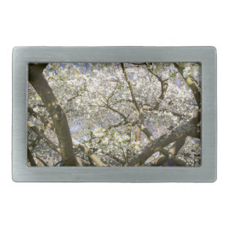 Flowering trees with white blossom in spring belt buckle
