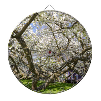 Flowering trees with white blossom in spring dart board