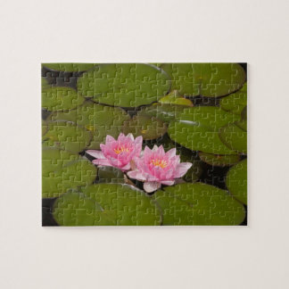 Flowering water lilies jigsaw puzzle