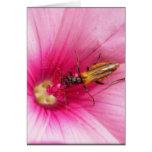 Flowerlife Grußkarte