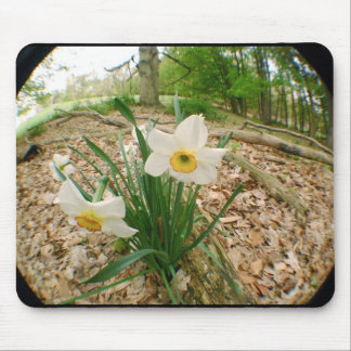 Flowerpad Mouse Pads