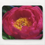 Flowers005 Mouse Mats