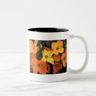 flowers1 Two-Tone coffee mug