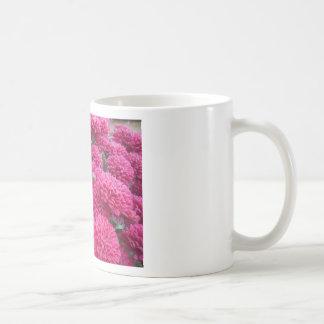 Flowers-001.JPG Taza De Café