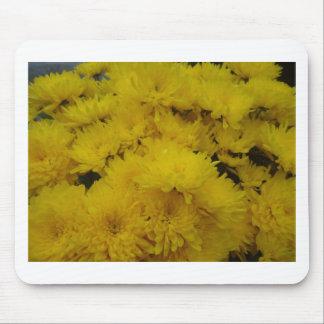 Flowers-003.JPG Mouse Pad