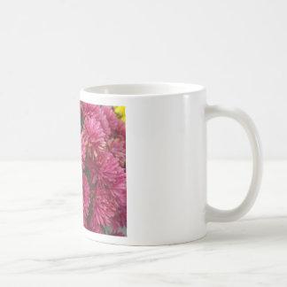 Flowers-005.JPG Taza De Café