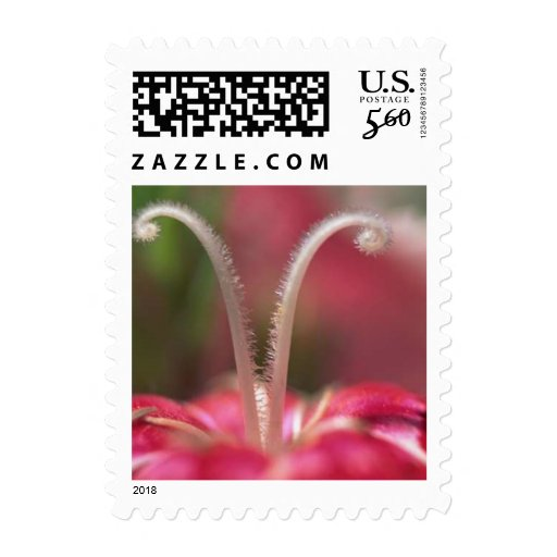 Flowers 014sm postage stamps