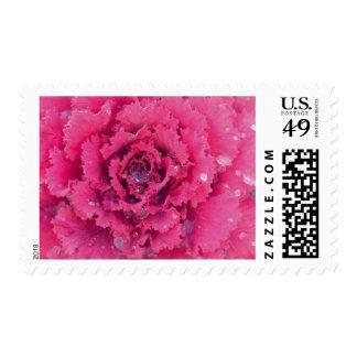 Flowers 132 postage