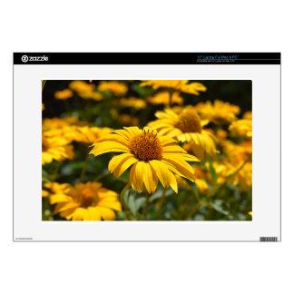 flowers-2824808