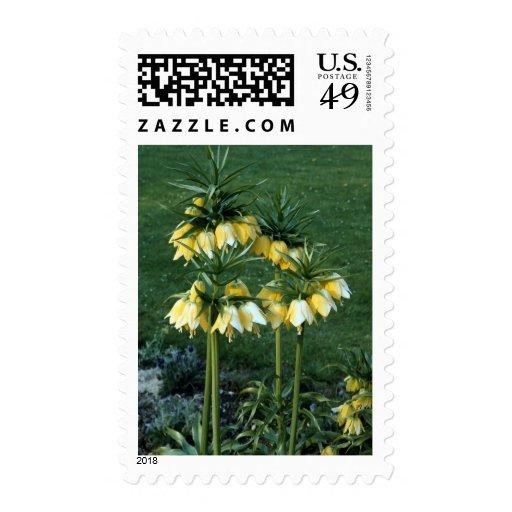 Flowers 34 postage