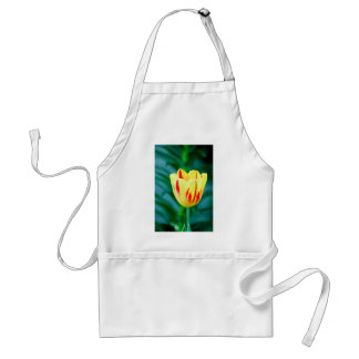 Flowers 365 adult apron
