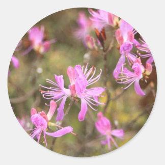 flowers 9.jpg classic round sticker