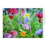 Flowers After a Rain Card
