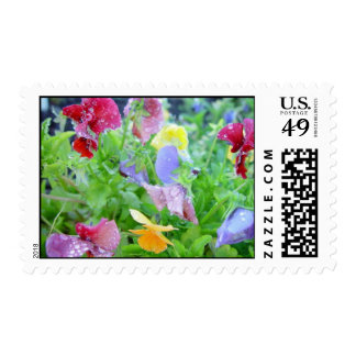 Flowers After a Rain Postage